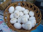 温泉卵.jpg